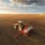 Acondicionamiento Del Terreno O Medio De Cultivo En Actividades Agrícolas